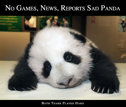 Sad Panda NBA Playoffs